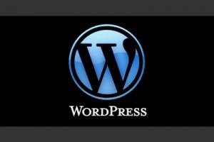 Web Design (WordPress focus)